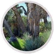Arthur B Ripley Desert Woodland State Park Round Beach Towel
