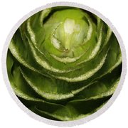 Artichoke Close-up Round Beach Towel