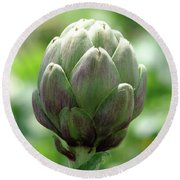 Artichoke In Spain Round Beach Towel