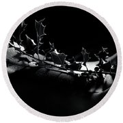 Artistic Nude Abstract Closeup Of A Thorny Holly Tree Branch On  Round Beach Towel