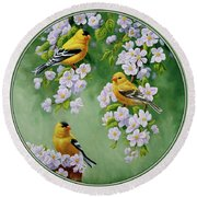 American Goldfinch Spring Round Beach Towel by Crista Forest