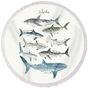 Sharks - Landscape Format Round Beach Towel by Amy Hamilton