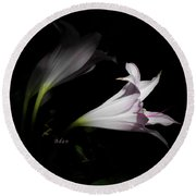 Lovely Lilies Dreams To Light Round Beach Towel