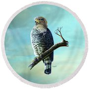 Southern Banded Snake Eagle Round Beach Towel