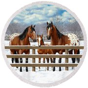 Bay Appaloosa Horses In Snow Round Beach Towel by Crista Forest