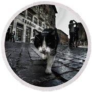 Street Cat Round Beach Towel
