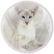 Adorable Blue-eyed Oriental Cat  Round Beach Towel