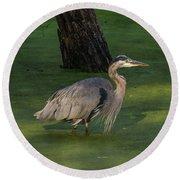 Heron In Dark Pond Round Beach Towel