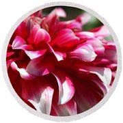 oozing With Life Dahlia Round Beach Towel