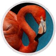 Profile Of An American Flamingo Round Beach Towel