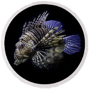 Majestic Lionfish Round Beach Towel