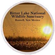 Bitter Lake National Wildlife Refuge Birds, Roswell, New Mexico Round Beach Towel