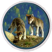Wolf Pups - Anybody Home Round Beach Towel by Crista Forest