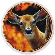 Whitetail Deer - Surprise Round Beach Towel by Crista Forest