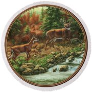 Whitetail Deer - Follow Me Round Beach Towel by Crista Forest