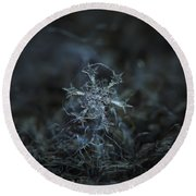 Snowflake Photo - Starlight Round Beach Towel