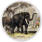 Asiatic Elephant With Young, 19th Round Beach Towel
