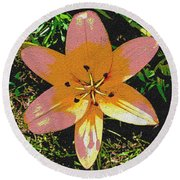 Asiatic Lily With Sandstone Texture Round Beach Towel