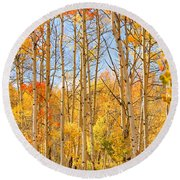 Aspen Fall Foliage Vertical Image Round Beach Towel