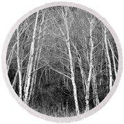 Aspen Forest Black And White Print Round Beach Towel