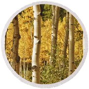 Aspen Gold Round Beach Towel by James BO  Insogna