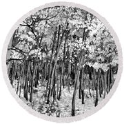 Aspen In Snow Black And White Round Beach Towel