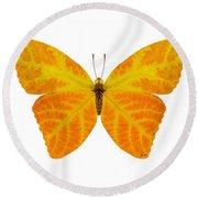 Aspen Leaf Butterfly 3 Round Beach Towel