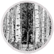 Aspens And The Pine Black And White Fine Art Print Round Beach Towel