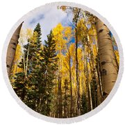 Aspens In Santa Fe 3 Round Beach Towel