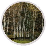 Aspens In The Fall Round Beach Towel