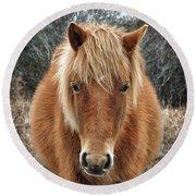 Assateague Island Horse Miekes Noelani Round Beach Towel