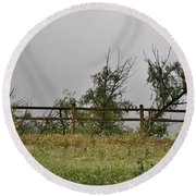 At Peters Canyon In The Rain 1 Round Beach Towel