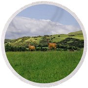 At The Hill Bottom. Round Beach Towel