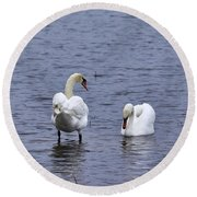 At Your Service. Mute Swan Round Beach Towel