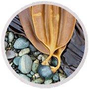 Attached - Laminaria Yezoensis Round Beach Towel
