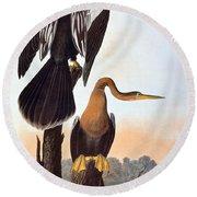 Audubon: Anhinga Round Beach Towel