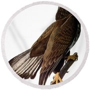 Audubon: Bald Eagle Round Beach Towel