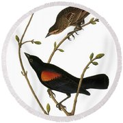Audubon: Blackbird Round Beach Towel