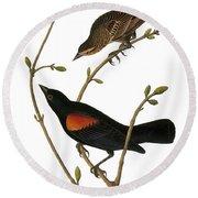 Audubon: Blackbird Round Beach Towel