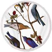 Audubon: Bluebirds Round Beach Towel
