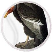 Audubon: Condor Round Beach Towel