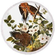 Audubon Dove Round Beach Towel