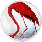 Audubon: Flamingo, 1827 Round Beach Towel