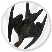 Audubon: Frigatebird Round Beach Towel