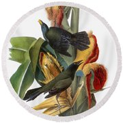 Audubon: Grackle Round Beach Towel