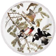 Audubon: Grosbeak Round Beach Towel