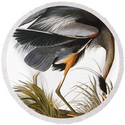 Audubon: Heron Round Beach Towel