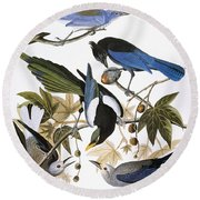 Audubon: Jay And Magpie Round Beach Towel