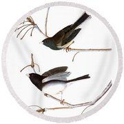 Audubon: Junco, (1827) Round Beach Towel