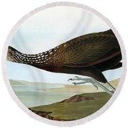 Audubon: Limpkin Round Beach Towel